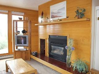 TR411 Timeshare Condo w/Wifi, Clubhouse, Mountain Views, Fireplace - Silverthorne vacation rentals