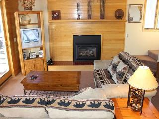 TR429 Nice Condo w/Wifi, Clubhouse, Mountain Views, Fireplace - Silverthorne vacation rentals