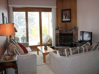 BV102DD Attractive Condo with Elevator, Wifi, Fireplace, Clubhouse access - Silverthorne vacation rentals