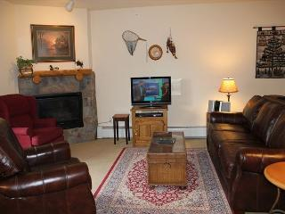 TF2664 Pretty Condo w/Fireplace, Wifi, Walk to Lifts, Common Hot Tubs - Keystone vacation rentals