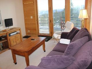 TR5024B Super Condo w/Wifi, Clubhouse, Mountain Views, Fireplace - Silverthorne vacation rentals