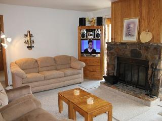 BV103BB 1st floor, Cute Condo with Elevator, Wifi, Fireplace, Clubhouse - Silverthorne vacation rentals