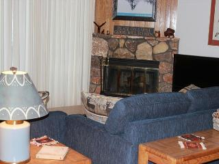 BV104DD Nice Condo with Elevator access, King Bed, Wifi, Fireplace, Clubhouse - Silverthorne vacation rentals