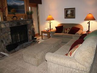 BV305BB Pleasing Condo w/ Elevator, Wifi, Fireplace, Clubhouse - Silverthorne vacation rentals