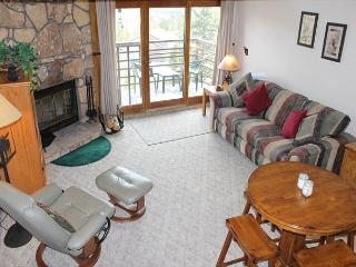 BV402EDD Comfy Studio Condo with Elevator, Wifi, Fireplace, Clubhouse access - Silverthorne vacation rentals