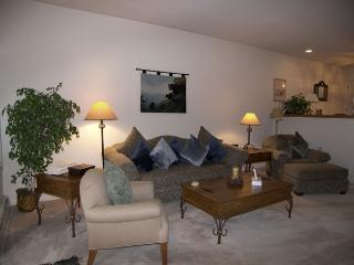 Nice Condo with Garage and Television - Incline Village vacation rentals