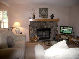 Incline Village 1 Bedroom & 1 Bathroom Condo (31MC) - Incline Village vacation rentals