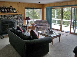 Romantic 1 bedroom Cabin in Incline Village - Incline Village vacation rentals