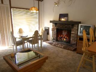 Alpine Terrace #5 - Incline Village vacation rentals