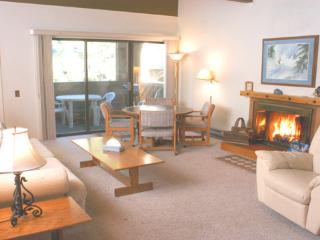 Super Condo with 3 Bedroom & 2 Bathroom in Incline Village (8FP) - Incline Village vacation rentals