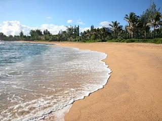 Beaufiul Haena Home!! Short walk to Tunnels beach,a favorite vacation rental! - Hanalei vacation rentals