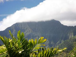 10% off April in Hanalei - Spacious with Amazing Mountain Views!! - Princeville vacation rentals