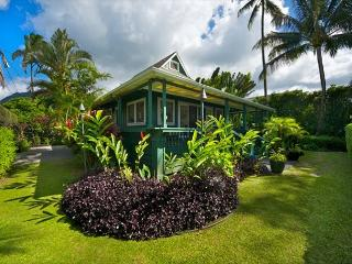 Ultimate Beachfront House - Hanalei, Pine Trees surf spot, has A/C! - Hanalei vacation rentals