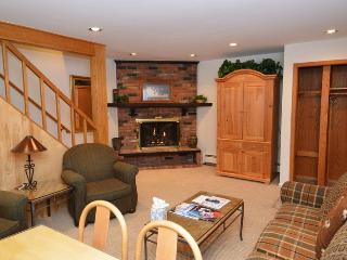 Alpenblick Unit 11 - Aspen vacation rentals