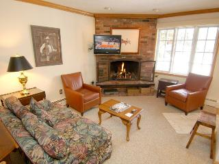 Alpenblick Unit 9 - Aspen vacation rentals
