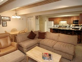 Chateau Chaumont Unit 5 - Aspen vacation rentals