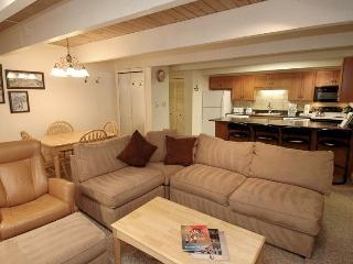 Perfect 2 bedroom Condo in Aspen - Aspen vacation rentals