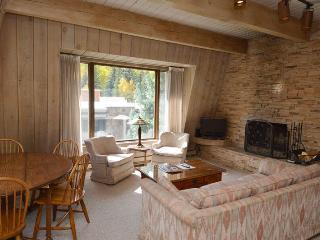 Chateau Dumont Unit 15 - Aspen vacation rentals