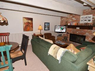 Chateau Dumont Unit 2 - Basalt vacation rentals