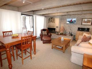 Chateau Eau Claire Unit 8 - Aspen vacation rentals