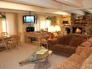 Chateau Roaring Fork Unit 16 - Snowmass vacation rentals