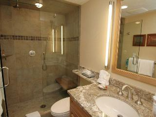 Silverglo Condominiums Unit 105 - Aspen vacation rentals