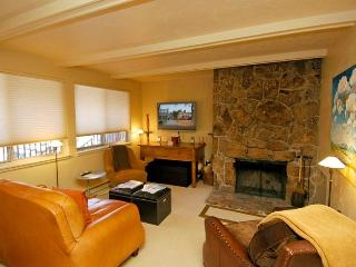 Silverglo Codominiums Unit 302 - Aspen vacation rentals
