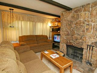 Silverglo Codominiums Unit 303 - Aspen vacation rentals