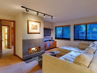 Silver Glo Unit 309 - Snowmass vacation rentals