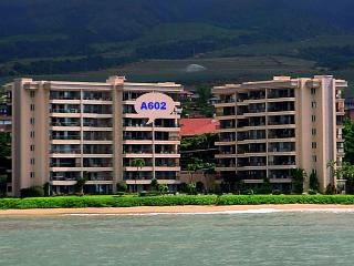 A602 Hololani Oceanfront Resort - Lahaina vacation rentals