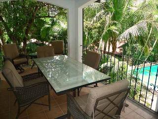 Lovely condo- vaulted ceilings, a/c, full kitchen, private terrace, internet - Tamarindo vacation rentals