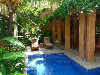 Lavish vacation villa-ocean view, kitchen, balcony, gas grill, internet, a/c - Sardinal vacation rentals