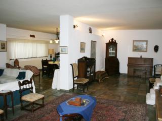 Athens Apartment Greece - Athens - Ekali - Drossia vacation rentals