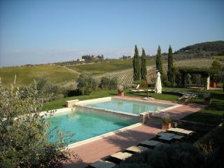 Apartment Rental in Tuscany, Montefiridolfi - Bianco 7 - Montefiridolfi vacation rentals