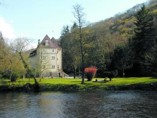 Chateau Rental in Burgundy, Voutenay sur Cure - Chateau Agnes - Voutenay Sur Cure vacation rentals