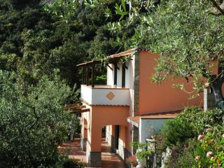 Small House Near Mass Lubrense on the Amalfi Coast - Delfino - Termini vacation rentals