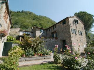 Apartment near Lucca - L'Asilo 1 - Matraia vacation rentals