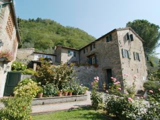Accommodation near Lucca  - L'Asilo 2 - Matraia vacation rentals