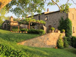 Country Home on the Tuscany Umbria Border - La Cappella dell'Alfina - Acquapendente vacation rentals