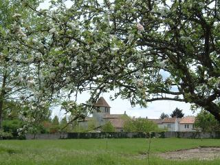 Brilliantly Restored France Villa in Aquitaine - La Ferme de la Dronne - Riberac vacation rentals