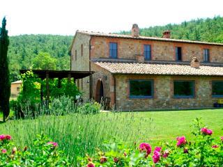 Villa Rental in Tuscany, Montepulciano - Villa degli Artisti - Monticchiello vacation rentals