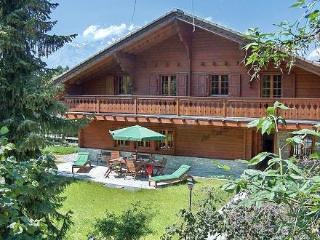 Valais Villa - Villa Etang - Nendaz vacation rentals