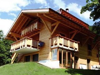 Switzerland Villa - Villa Prairie - Vaud vacation rentals