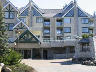 Wildwood Lodge 1 bdm, spacious condo, free internet, close to lifts - Whistler vacation rentals