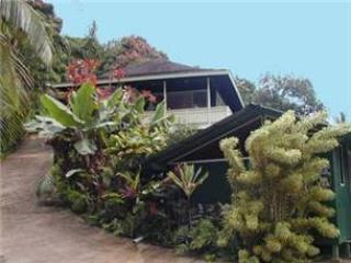 Bright Wainiha vacation House with Mountain Views - Wainiha vacation rentals