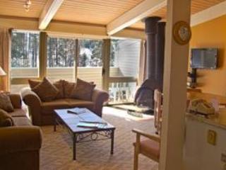 132 - Image 1 - Taos Ski Valley - rentals