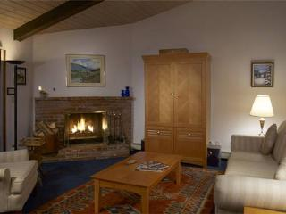 WOODBRIDGE #25E - Basalt vacation rentals
