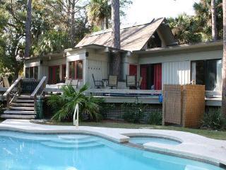 Pelican 7 - Hilton Head vacation rentals