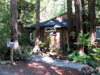Cozy 2 bedroom Guerneville House with Internet Access - Guerneville vacation rentals