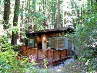 Bright 2 bedroom House in Cazadero - Cazadero vacation rentals